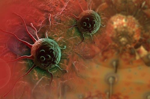 2000-2020: i principali risultati e successi contro il cancro. Dal 2015 in avanti