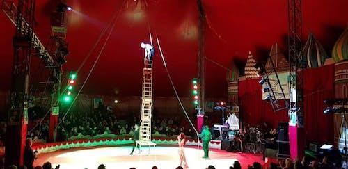 Al circo arriva... la befana per AIRC