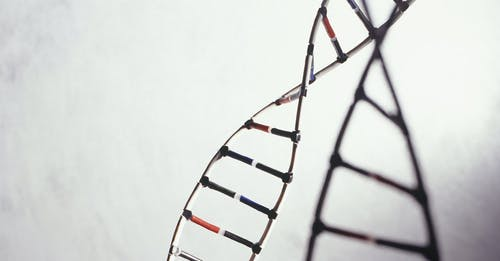 Dal genoma alla cura la ricerca corre