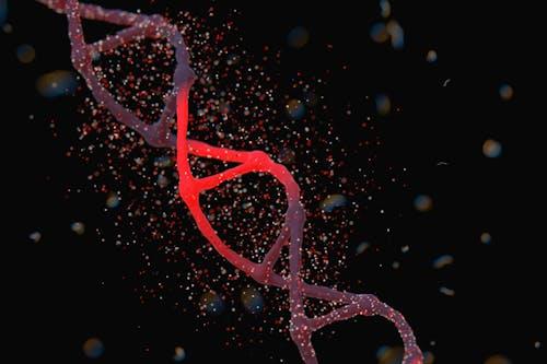 ERAP-1: un nuovo possibile bersaglio terapeutico in oncologia