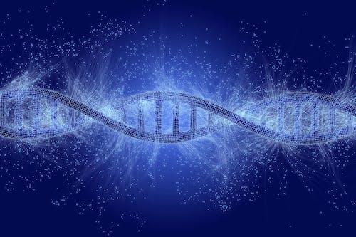 Ecco a voi i molti genomi del cancro