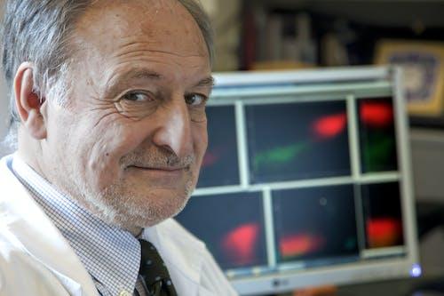 """Verso un trattamento """"chemio-free"""" per la leucemia acuta linfoblastica più comune degli adulti"""