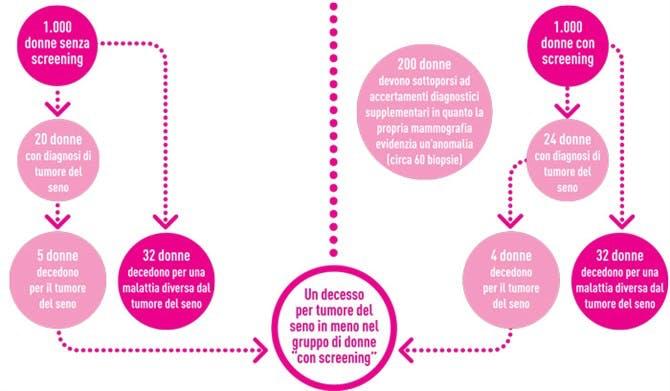 diagramma mammografia