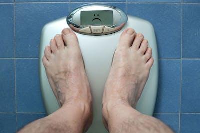 persone sovrappeso in inglese