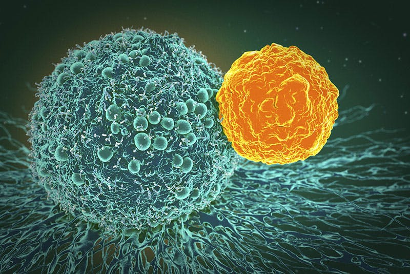 Verso l'immunoterapia per il medulloblastoma